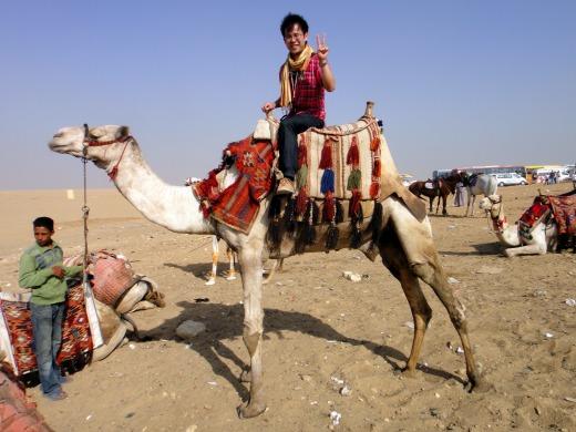 6日目 エジプトに行ったら一度は乗ってみたかった乗り物ラクダ!!