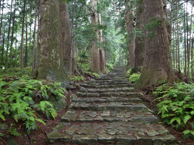 2日目 世界遺産 熊野古道 大門坂を降る