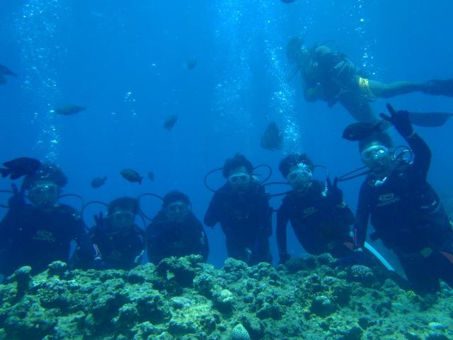 2日目 青の洞窟 体験ダイビング+熱帯魚餌付けのアクティビティ
