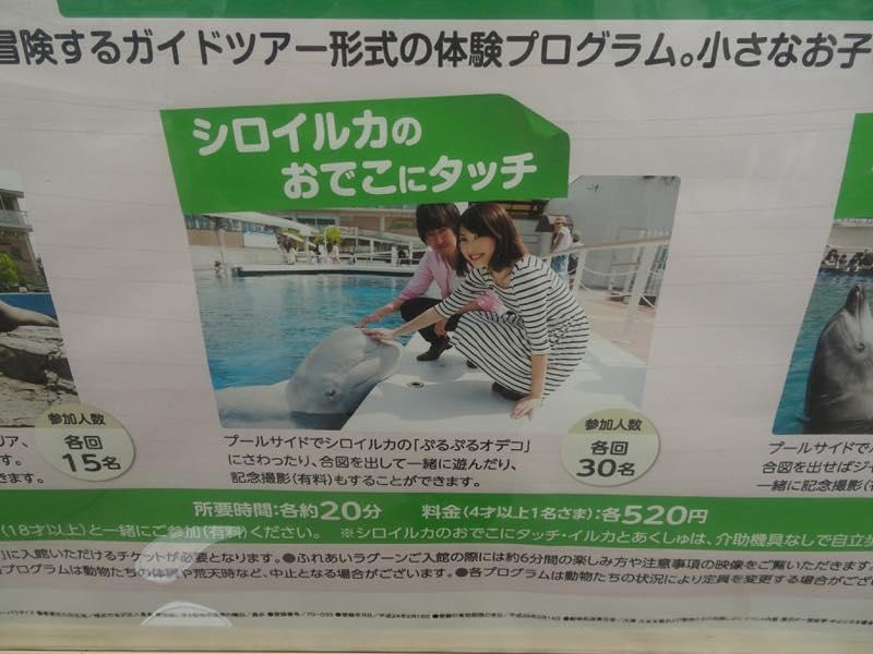 優待券を使って、横浜・八景島シーパラダイスへ行ってきました!!