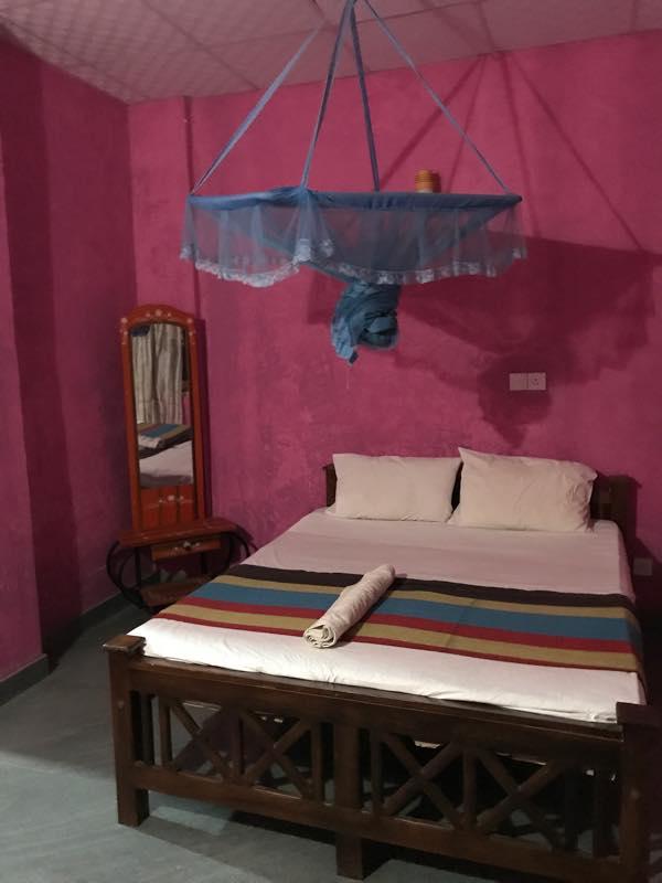 シーギリア到着!!<br>弟が2年前に泊まった宿(Padmini Lodge)チェックイン!!<br>アユルヴェーダを受けに行く。