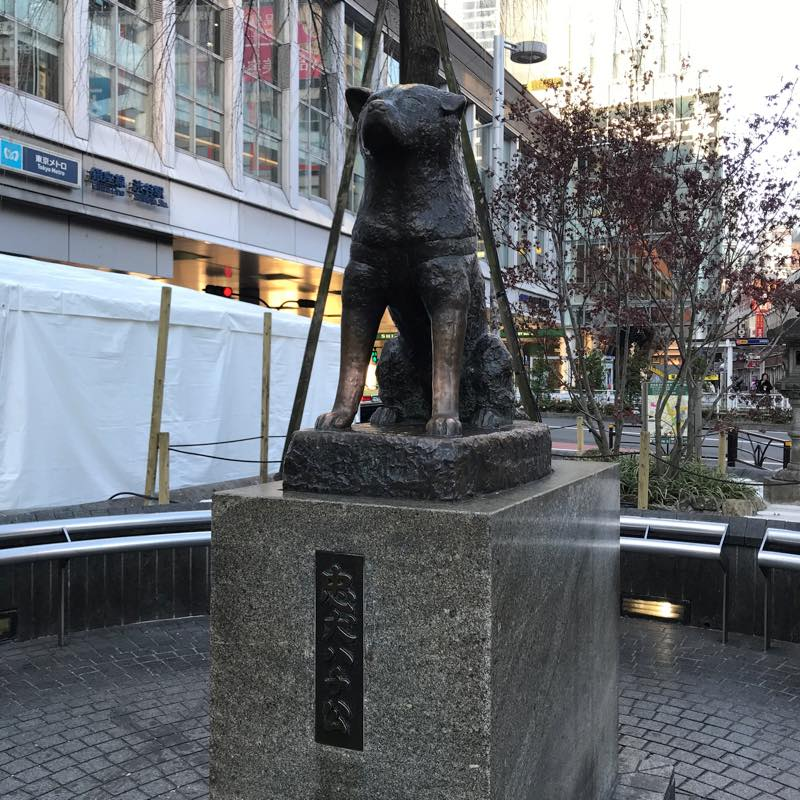 渋谷駅から外回り駒込駅まで歩いて昼食タイム<br>第2回 山手線一周ウォーキング!!