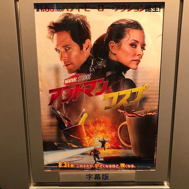 【映画鑑賞】アントマン&ワスプ を鑑賞!!@TOHOシネマズ渋谷