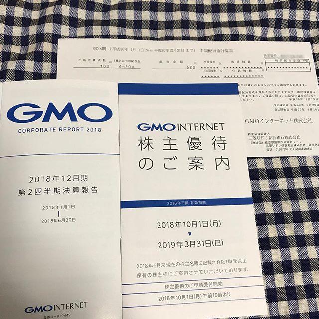 620円の中間配当金が到着!! 第28期GMOインターネット(株)