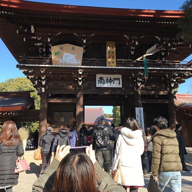 今朝、夜行バスで東京に帰って明治神宮で初詣