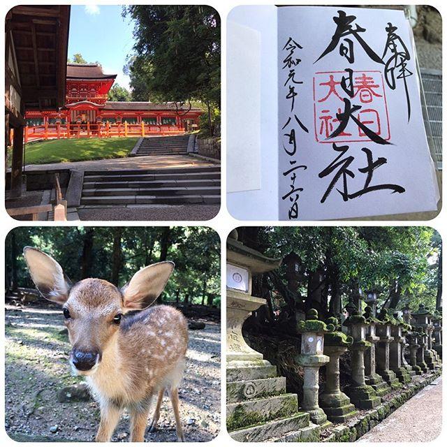 奈良観光❣️<br>春日大社、東大寺、正倉院正倉、興隆寺
