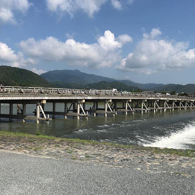渡月橋、世界遺産の天龍寺、竹林の小径と京都 嵐山を観光❣️