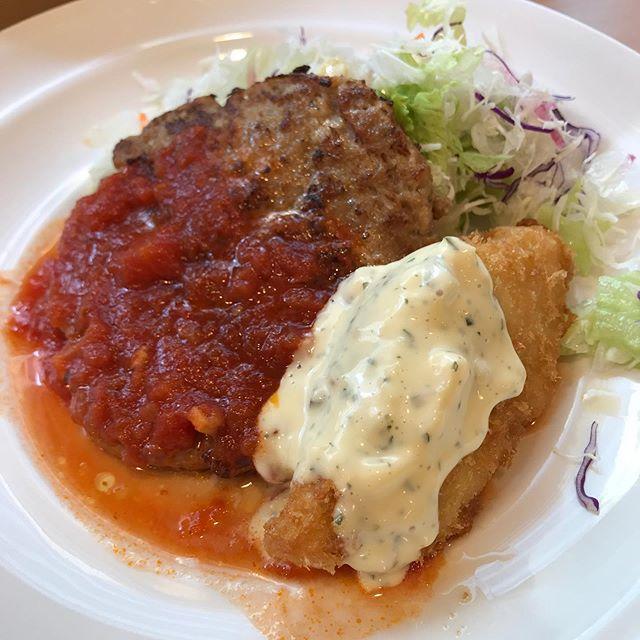 【優待ランチ】ガストで日替わりランチ「ハンバーグトマトソース&白身魚のフライ」を頂く❣️