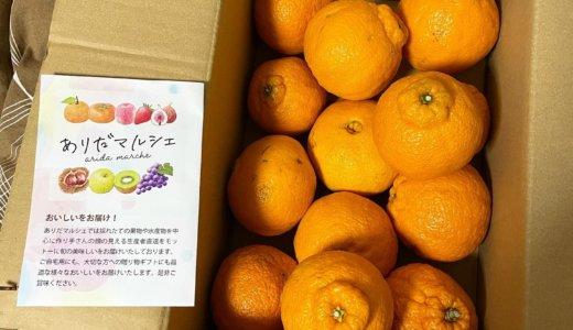 【ふるさと納税🎁】和歌山県美浜町より「濃厚不知火 デコポン 3kg」が到着しました❣️